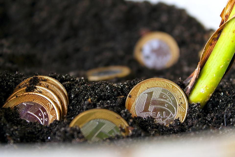 zasazené mince